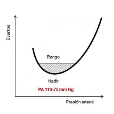 ¿Hay una curva J en el Cerebro?