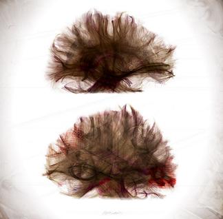 Ethienne Saint-Amant. Autorretrato II. Caoscopia. Brain Art Competition 2013