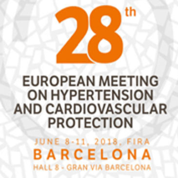 Working group hypertension and brain-european society of hypertension (wgh&b-esh)